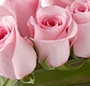 Mini aranjament roz