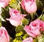 Trandafiri roz deluxe