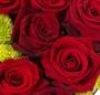 Inima Valentinei