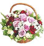Cos trandafiri trio